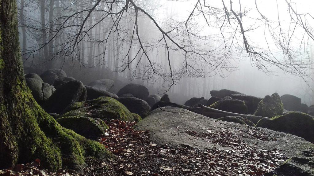Foto: Felsenmeeer im winterlichen Nebel