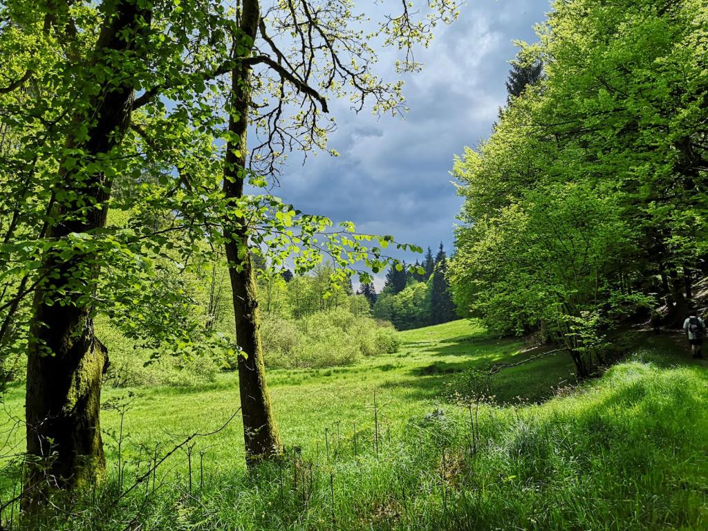 Foto: Dunkle Wolken über engem Tal im Odenwald
