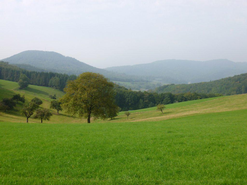 Foto: Blick über hügelige Odenwaldlandschaft