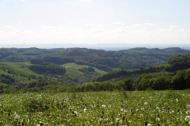 Foto: Blick im Odenwald zur Rheinebene
